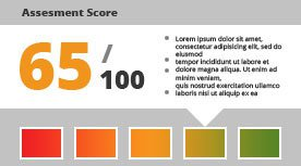 Website Assessment