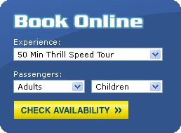 example of the Ticket Booking System Web Form